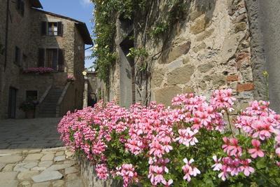 Volpaia, a Hill Village Near Radda, Chianti, Tuscany, Italy, Europe Photographic Print by Robert Harding