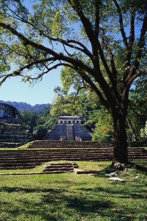 Ancient Mayan Temple, Palenque, Chiapas, Mexico Photographic Print by Rob Cousins