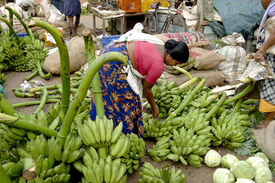 Vegetable Market, Chalai, Trivandrum, Kerala, India, Asia Photographic Print by Balan Madhavan