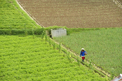 Farmer Surveying His Smallholding in the Fertile Hills of Central Java Photographic Print by Annie Owen