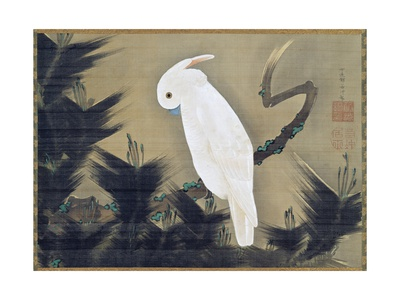 White Cockatoo on a Pine Branch Gicléetryck av Ito Jakuchu
