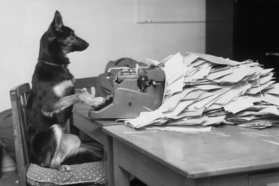 German Shepherd at a Typewriter Photographic Print