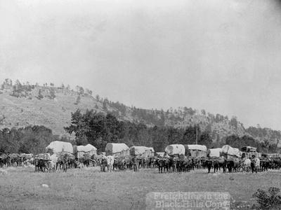 Wagon Train in the Black Hills Photographic Print by John C.H. Grabill