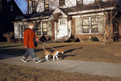 Boy Walking Dog on Sidewalk Photographic Print by William P. Gottlieb