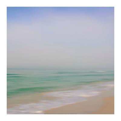 Seacoast 184 Prints by David Rowell