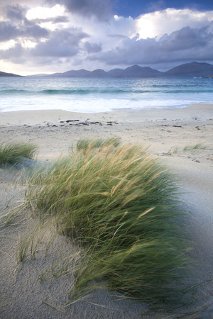 Beach at Luskentyre with Dune Grasses Blowing 写真プリント : リー・フロスト