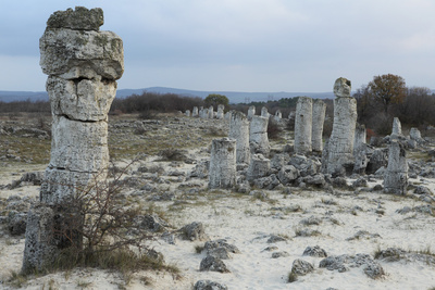 Rock Formation at the 50 Million Year Old Stone Forest (Pobiti Kamani) Photographic Print by Stuart Forster