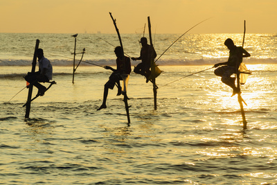 Stilt Fishermen, Dalawella, Sri Lanka, Indian Ocean, Asia Photographic Print by Christian Kober
