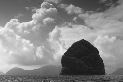 Northern Gannet (Morus Bassanus) Colony, St Kilda, Scotland, May 2009 Photographic Print by  Green