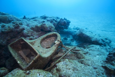 Toilet Bowl Resting on Coral Reef in Dominican Republic Photographic Print by Paul Souders