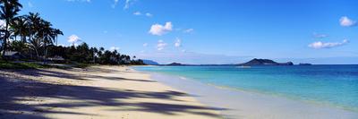 Palm Trees on the Beach, Lanikai Beach, Oahu, Hawaii, USA Photographic Print