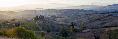 Valley at Sunrise, Val D'Orcia, Tuscany, Italy Photographic Print