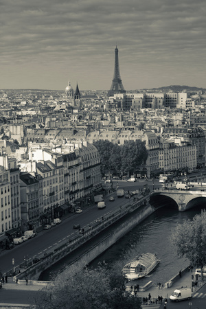 City with Eiffel Tower in the Background Viewed from Notre Dame Cathedral, Paris, Ile-De-France Photographic Print by Green Light Collection