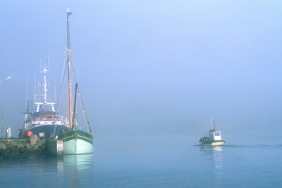 Fishing Boats at Loctudy Harbor, Brittany, France Photographic Print by Green Light Collection