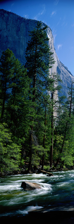 Merced River and El Capitan Yosemite National Park Ca Photographic Print