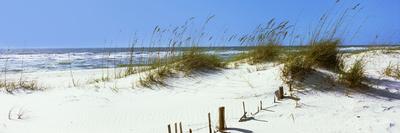 Mims Islands Escambia County Florida