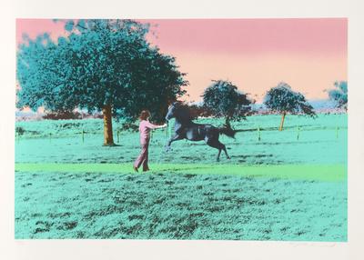 Flying Horse Limited Edition by Elizabeth Lennard