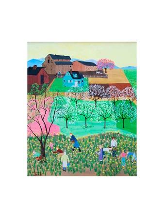 Healdsburg Daffodils Posters by Alexa Alexander