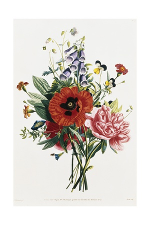 Ramo de FoxgAmor, Poppy, y Peonias Lámina giclée por Jean Louis Prevost