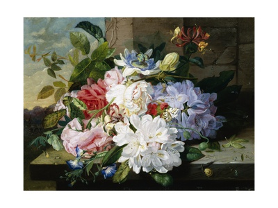 A Pretty Still Life of Roses, Rhododendron, and Passionflowers Giclee Print by John Wainwright