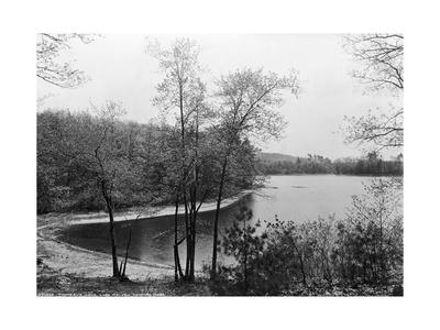 Walden Pond from Henry David Thoreau's Hut Giclee Print