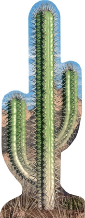 Cactus Single Figura de cartón