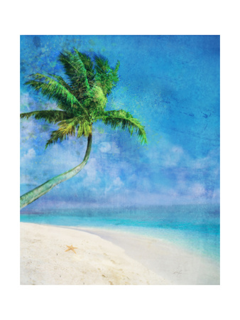 Palm Beach and Starfish Posters by Ken Roko