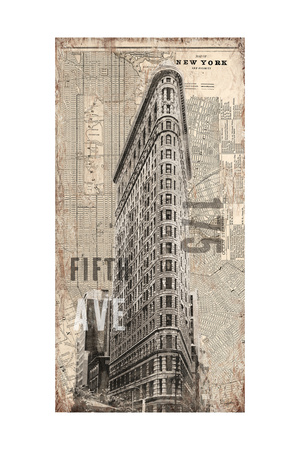 175 Fifth Avenue Prints by Evangeline Taylor