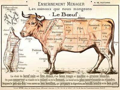 Beef Diagram Sanatsal Reprodüksiyon