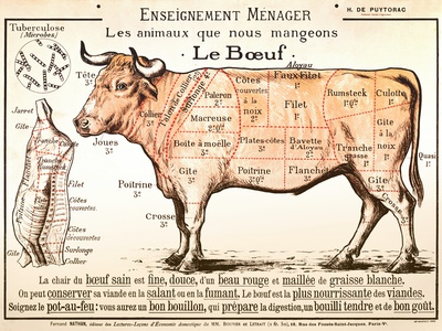 Beef Diagram Art
