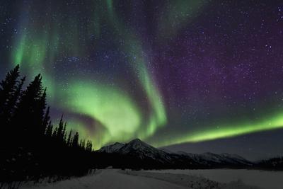 Aurora Borealis VI Photographic Print by Larry Malvin