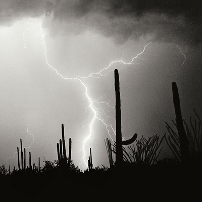 Electric Desert IV BW Photographic Print by Douglas Taylor