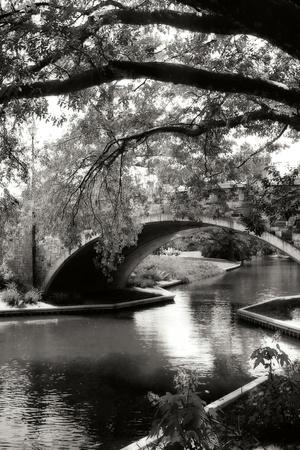 Garden Bridge II Photographic Print by Alan Hausenflock