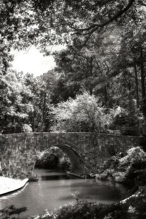 Garden Bridge I Photographic Print by Alan Hausenflock