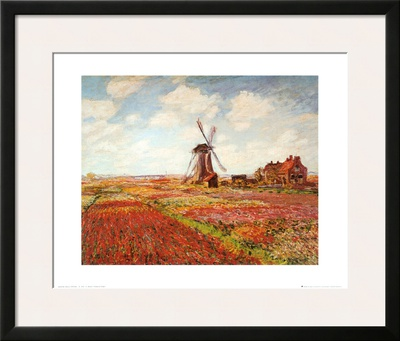 Tulip Fields with the Rijnsburg Windmill Posters by Claude Monet