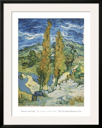 The Poplars at Saint-Remy, c.1889 Poster by Vincent van Gogh