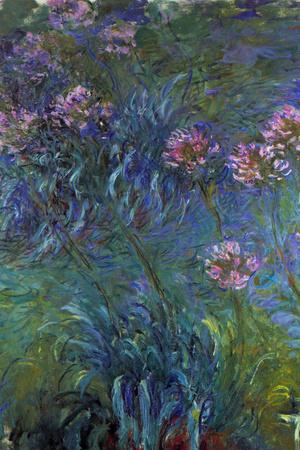 Claude Monet Jewelry Lilies Prints