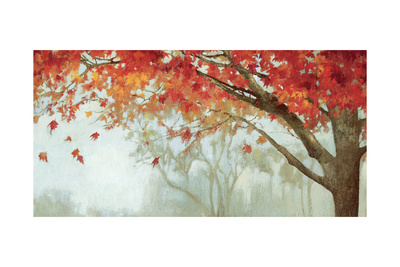 Fall Canopy II Prints by Andrew Michaels