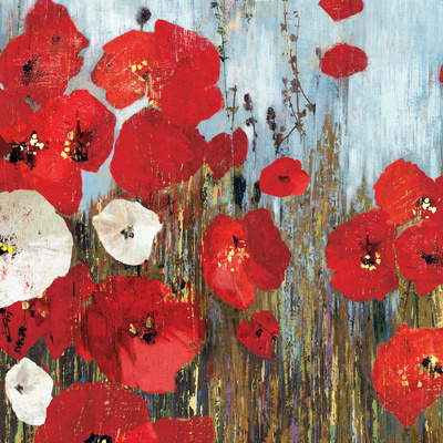 Passion Poppies I Posters by Andrew Michaels