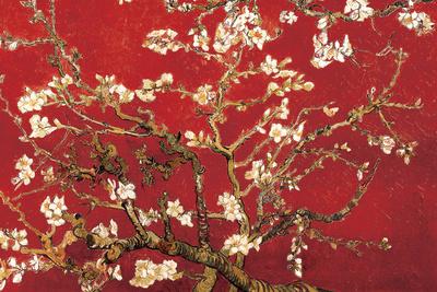 Almond Blossom - Red Posters af Vincent van Gogh
