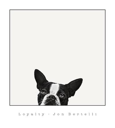 Loyalty Prints by Jon Bertelli