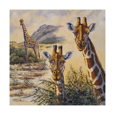 Safari IV Premium Giclee Print by Peter Blackwell