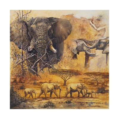 Safari II Premium Giclee Print by Peter Blackwell