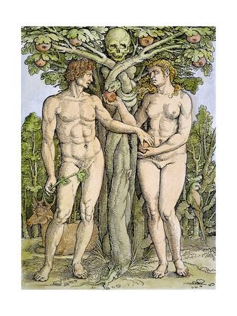 Adam and Eve Premium Giclee Print by Hans Sebald Beham