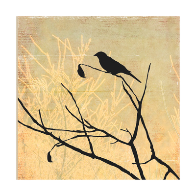 Perched Print by Andrew Michaels