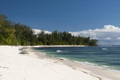 Denis Island, Seychelles, Indian Ocean, Africa Photographic Print by Sergio Pitamitz