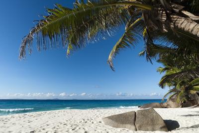 Anse Victorin, Fregate Island, Seychelles, Indian Ocean, Africa Photographic Print by Sergio Pitamitz