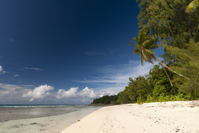 Anse Severe Beach, La Digue, Seychelles, Indian Ocean, Africa Photographic Print by Sergio Pitamitz