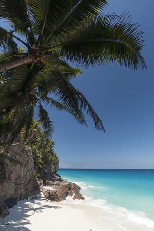 Anse Macquereau, Fregate Island, Seychelles, Indian Ocean, Africa Photographic Print by Sergio Pitamitz