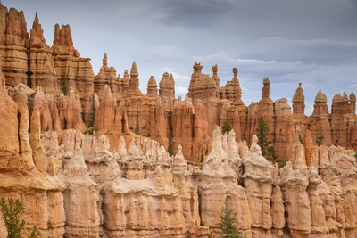 Bryce Canyon at Dawn Photographic Print by Gary Cook